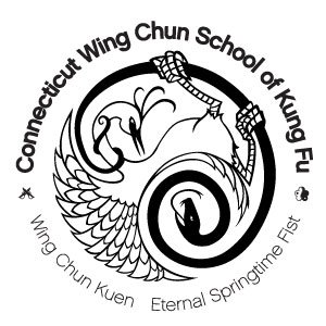 wing-chun-kung-fu-in-ct-3